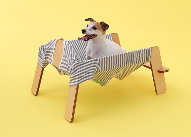 Собачий дизайн